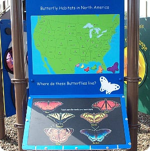 touch sensor butterfly exhibit